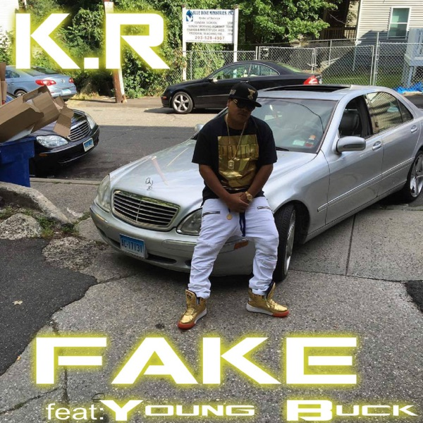 Fake (feat. Young Buck) - Single