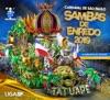 G.R.C.E.S. Mancha Verde - Oxalá, Salve a Princesa! a Saga de uma Guerreira Negra - Ao vivo by Liga Independente das Escolas de Samba iTunes Track 1