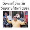 Super Hituri 2018 - EP, Sorinel Pustiu