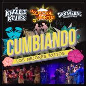 Hasta El Cielo Lloró (feat. Los Ángeles Azules) [Live]
