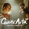 Ceartă Artă (feat. Connect-R) - Single, Feli