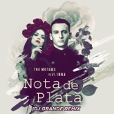 Nota De Plata (feat. Inna) [DJ Grande Remix] - Single