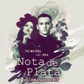 Nota De Plata (feat. Inna) [DJ Grande Remix] - Single