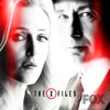 The X-Files, Season 11 wiki, synopsis
