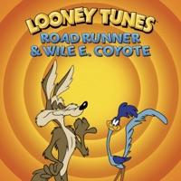 Road Runner & Wile E. Coyote, Vol. 1