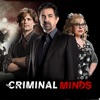 Criminal Minds, Season 13 wiki, synopsis