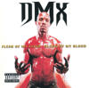 DMX - Flesh of My Flesh, Blood of My Blood artwork