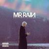 Mr.Rain - Butterfly Effect artwork