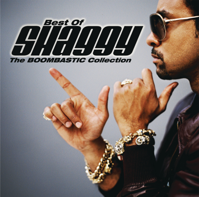 It Wasn't Me (feat. Ricardo Ducent) - Shaggy song