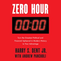 Zero Hour: Turn the Greatest Political and Financial Upheaval in Modern History to Your Advantage (Unabridged)