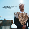 Mlindo The Vocalist - Emakhaya artwork