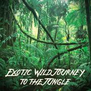 Restful Amazon - Ethnic Moods Academy - Ethnic Moods Academy