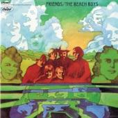 The Beach Boys - Diamond Head