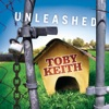 Courtesy Of The Red, White And Blue (The Angry American) by Toby Keith iTunes Track 1