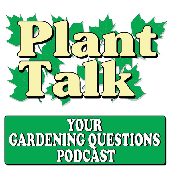 Your Gardening Questions