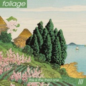 Foliage - Take Your Time, I Don't Mind