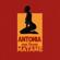 Matame (feat. Erik Frank) - Antonia