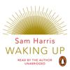 Sam Harris - Waking Up artwork