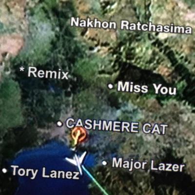Miss You (Remixes) - Single - Major Lazer