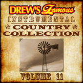 Drew's Famous Instrumental Country Collection, Vol. 11