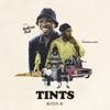 Anderson .Paak - Tints (feat. Kendrick Lamar) artwork