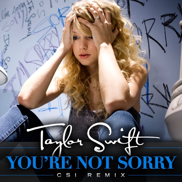 You're Not Sorry (CSI Remix) - Single