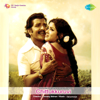 Ilaiyaraaja - Chittukkuruvi (Original Motion Picture Soundtrack) - EP artwork