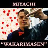 Wakarimasen