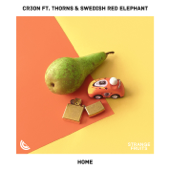 Home (feat. Thorns & Swedish Red Elephant)