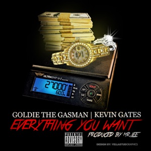 Everything You Want (feat. Kevin Gates) - Single Mp3 Download