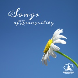 Songs of Tranquility: 50 Most Popular Music for Sleep Therapy, Relaxation,  Healing Massage & Spa, Nature Sounds with Piano Music by Mindfulness