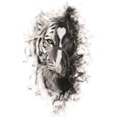 Para Sacarte De Mi Vida (feat. Los Tigres del Norte) - Alejandro Fernandez Cover