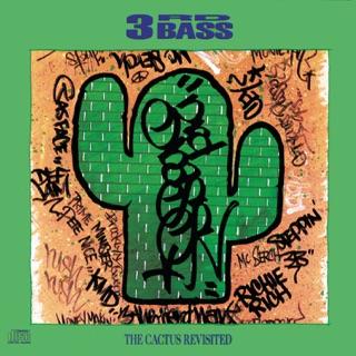 3rd Bass