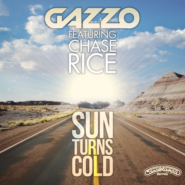 Sun Turns Cold (Radio Edit) [feat. Chase Rice] - Single