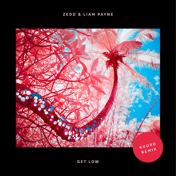 Get Low (Kuuro Remix) - Single