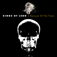 Kings of Leon - Because of the Times artwork