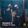 D'Banj - Shake It (feat. Tiwa Savage) artwork