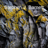 Stephen J. Barnett - Another Year  artwork