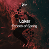 Laker - Echoes of Spring artwork