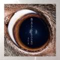 Japan Top 10 ロック Songs - ただ君に晴れ - ヨルシカ