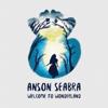 Anson Seabra - Welcome to Wonderland artwork