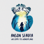 Welcome to Wonderland - Anson Seabra