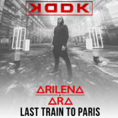 Last Train to Paris (feat. Arilena Ara)