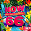 Various Artists - NOW That's What I Call Music, Vol. 66  artwork