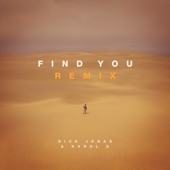 Find You (Remix) - Single