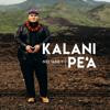 Kalani Pe'a - Kahunani No 'Ola'A artwork