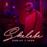 Skelebe (feat. Akon) - Single