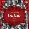 The Best of Gulzar Ever Vol 3 Single