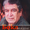 Boka - Молодость artwork
