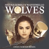 Wolves (Owen Norton Remix) - Single